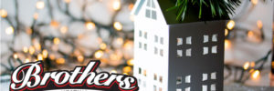 Tis the Season for LIGHTS banner image
